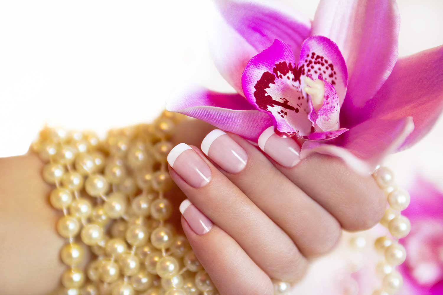 Hand with pink french manicure nails holding flower