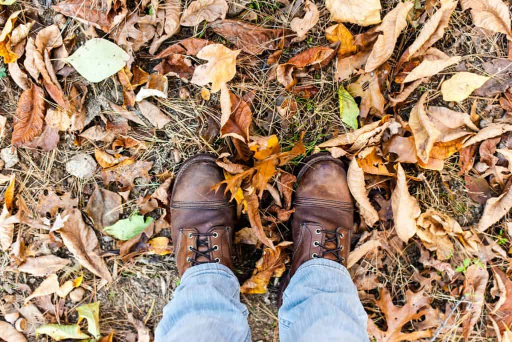 A man standing on the ground filled with leaves with his Red Wing boots on, How Much Do Red Wing boots Cost?