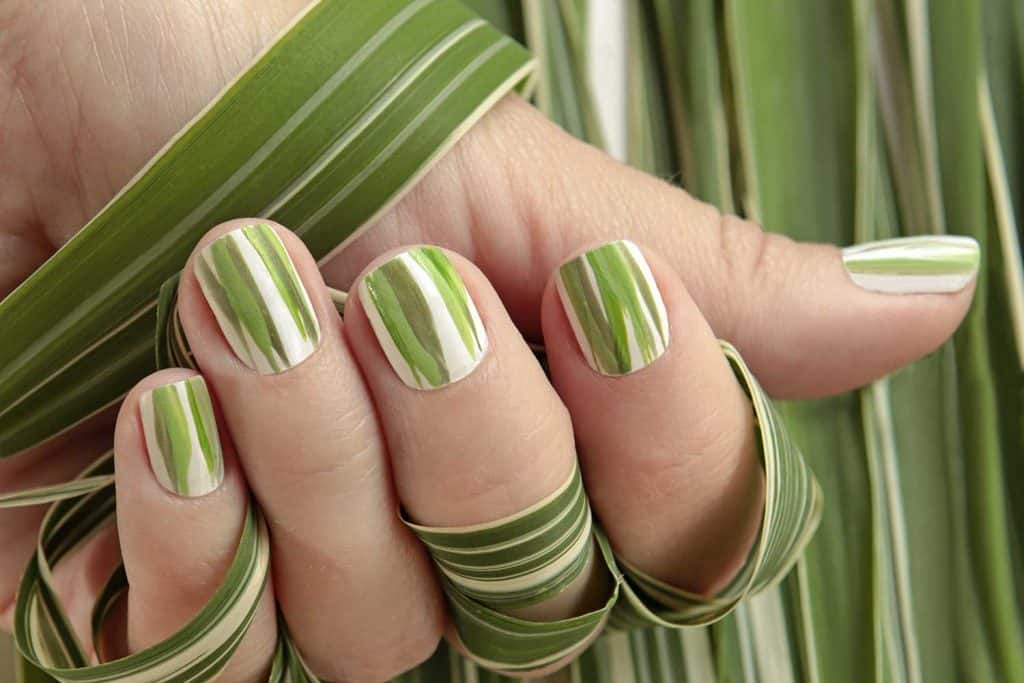Striped manicure of nature herbal design nail art