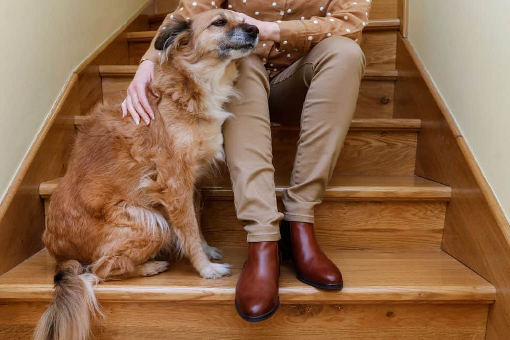 A woman wearing brown polka dot jacket, Khaki pants and Chelsea boots while sitting down on the stairs holding her dog