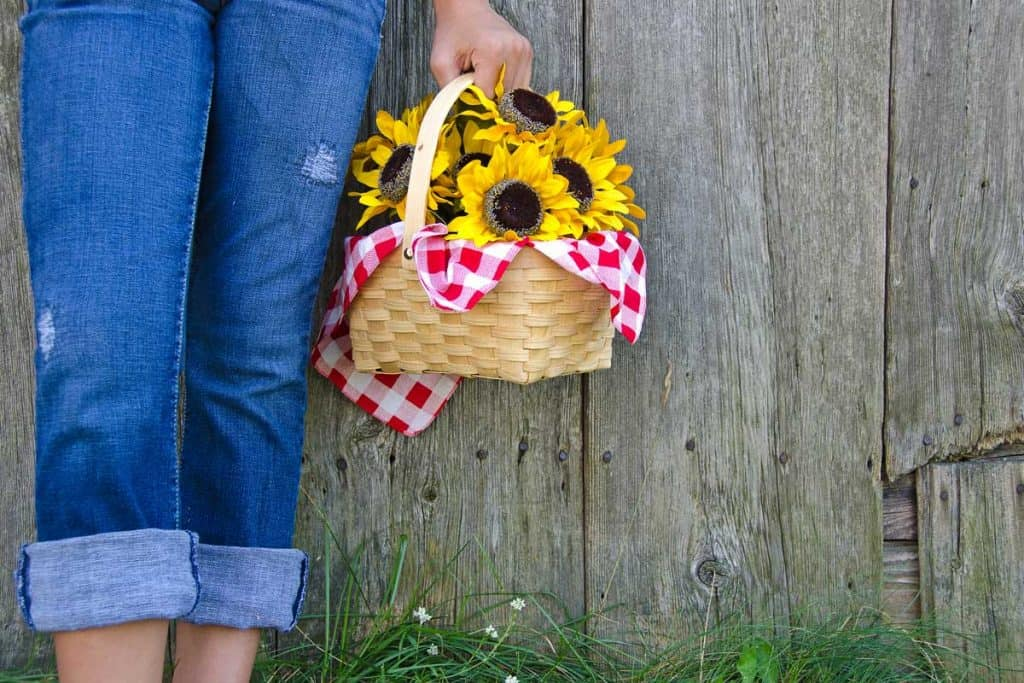 Young girl with rolled up blue jeans and sunflower basket by old barn, How To Turn Pants Into Capris [4 Easy Ways]