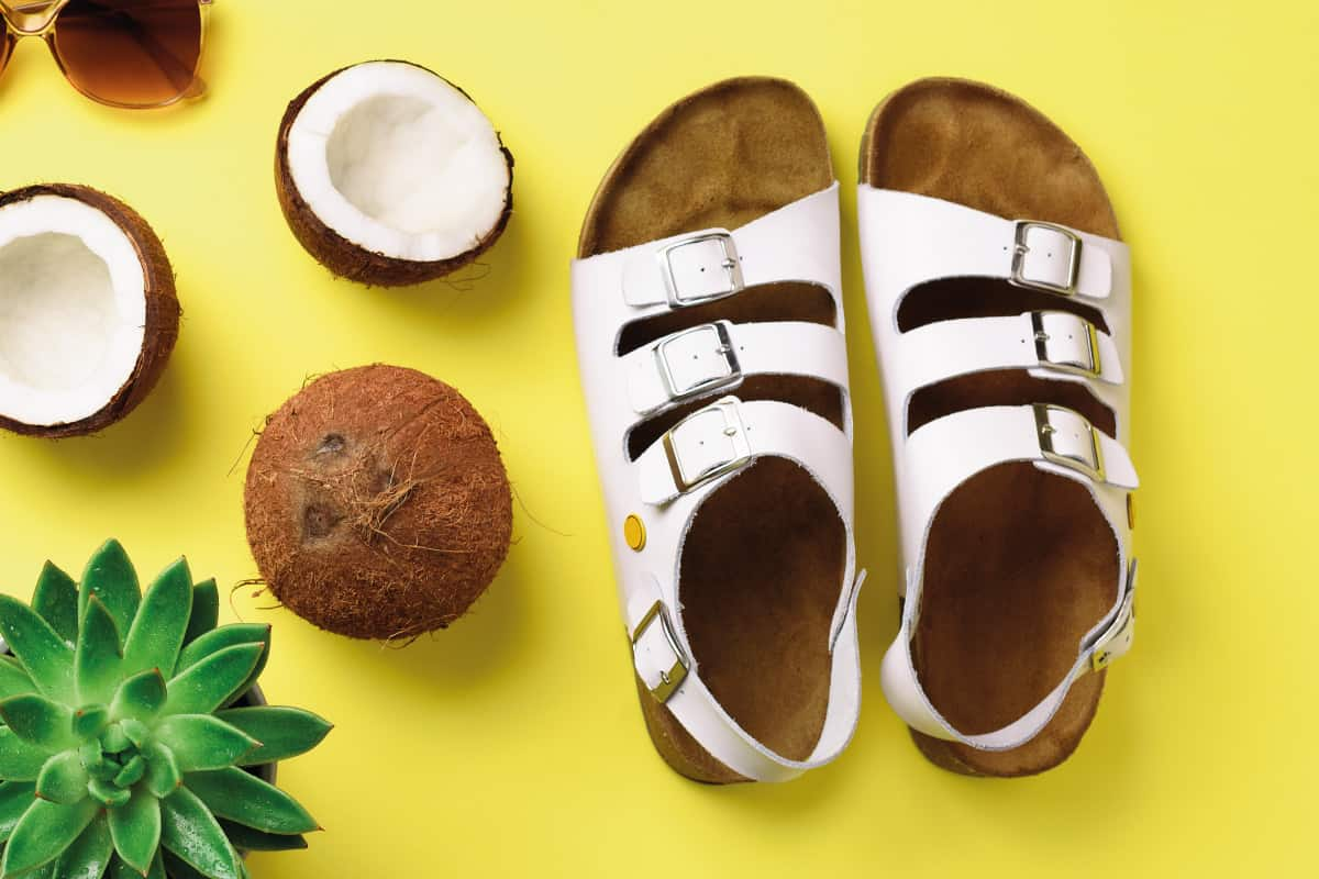 Birkenstocks on yellow background with cactus and coconuts, How To Clean Birkenstocks Sandals in 4 Steps