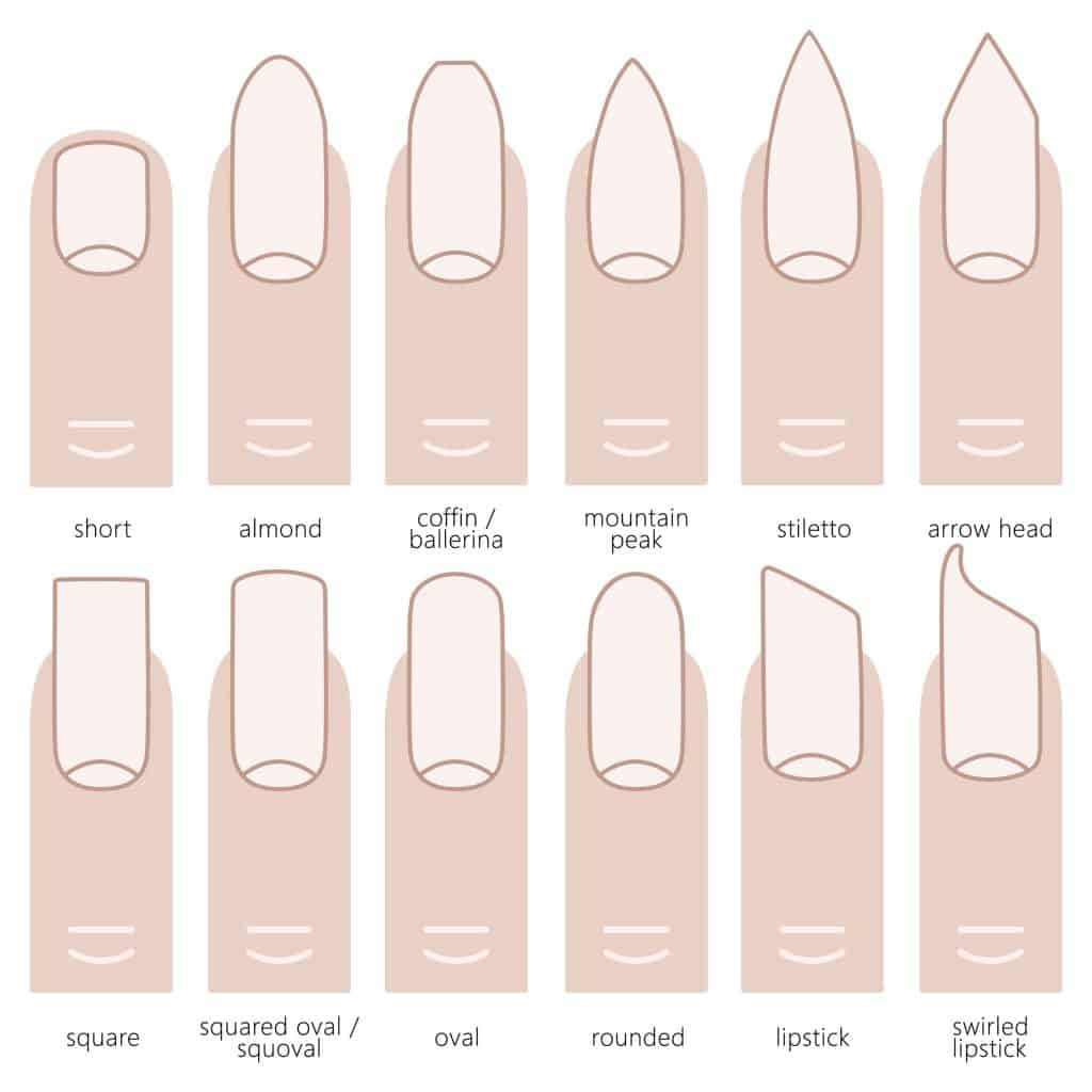 Illustration of different types of nail shapes