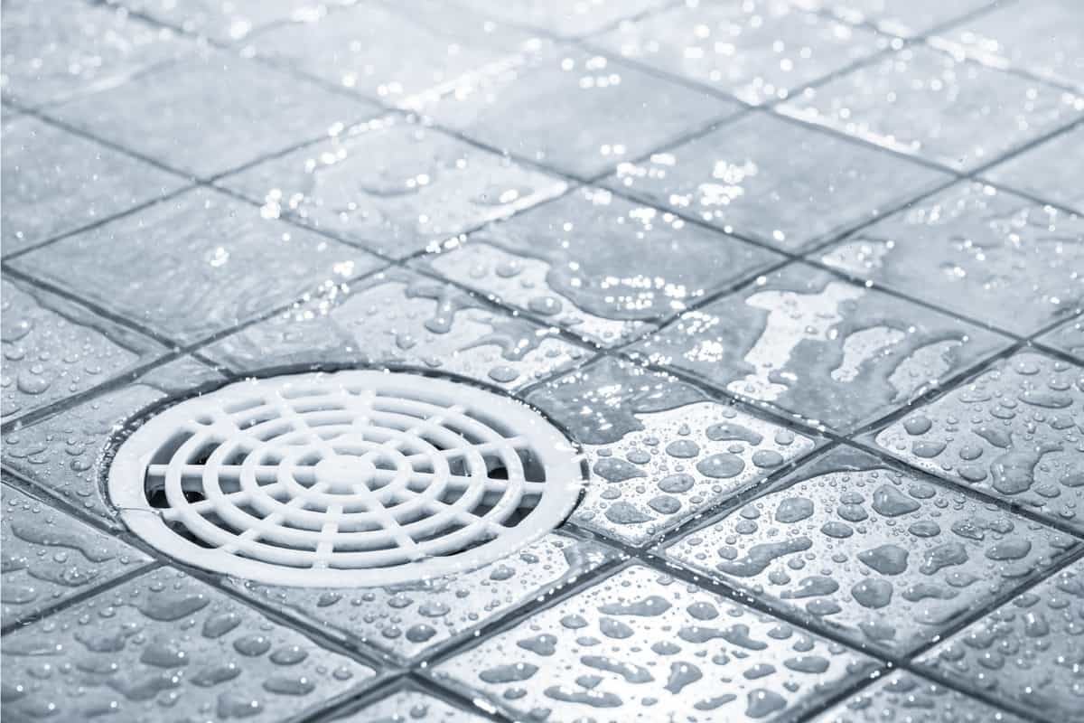 wet shower floor with plastic mesh trap on the drain