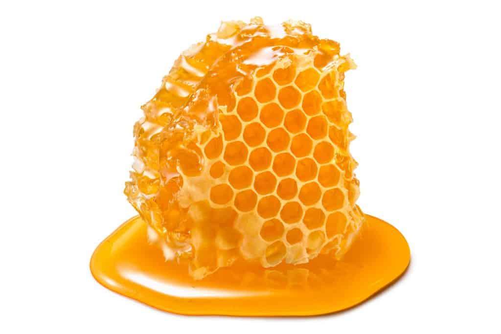 Honeycomb piece. Honey slice isolated on white background