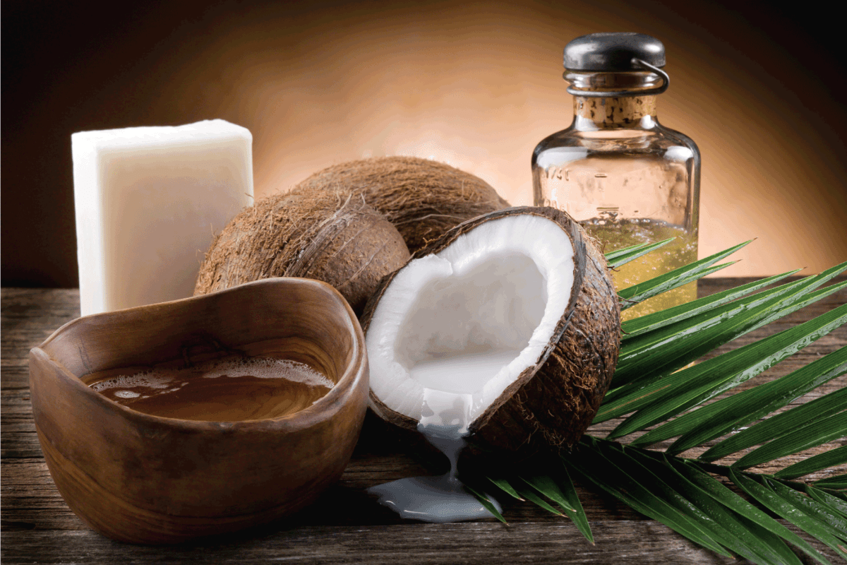 natural coconut oil, whole coconuts, palm leaf
