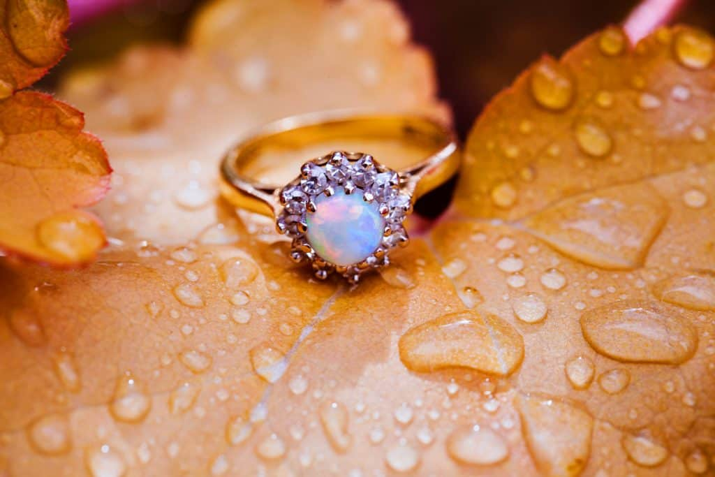 Antique engagement ring with moonstone and diamonds photographed on the orange plant leafs with the rain droplets on it.