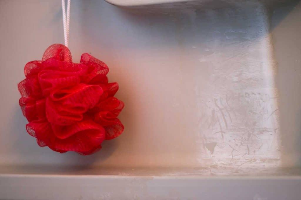 Loofa in bath tub