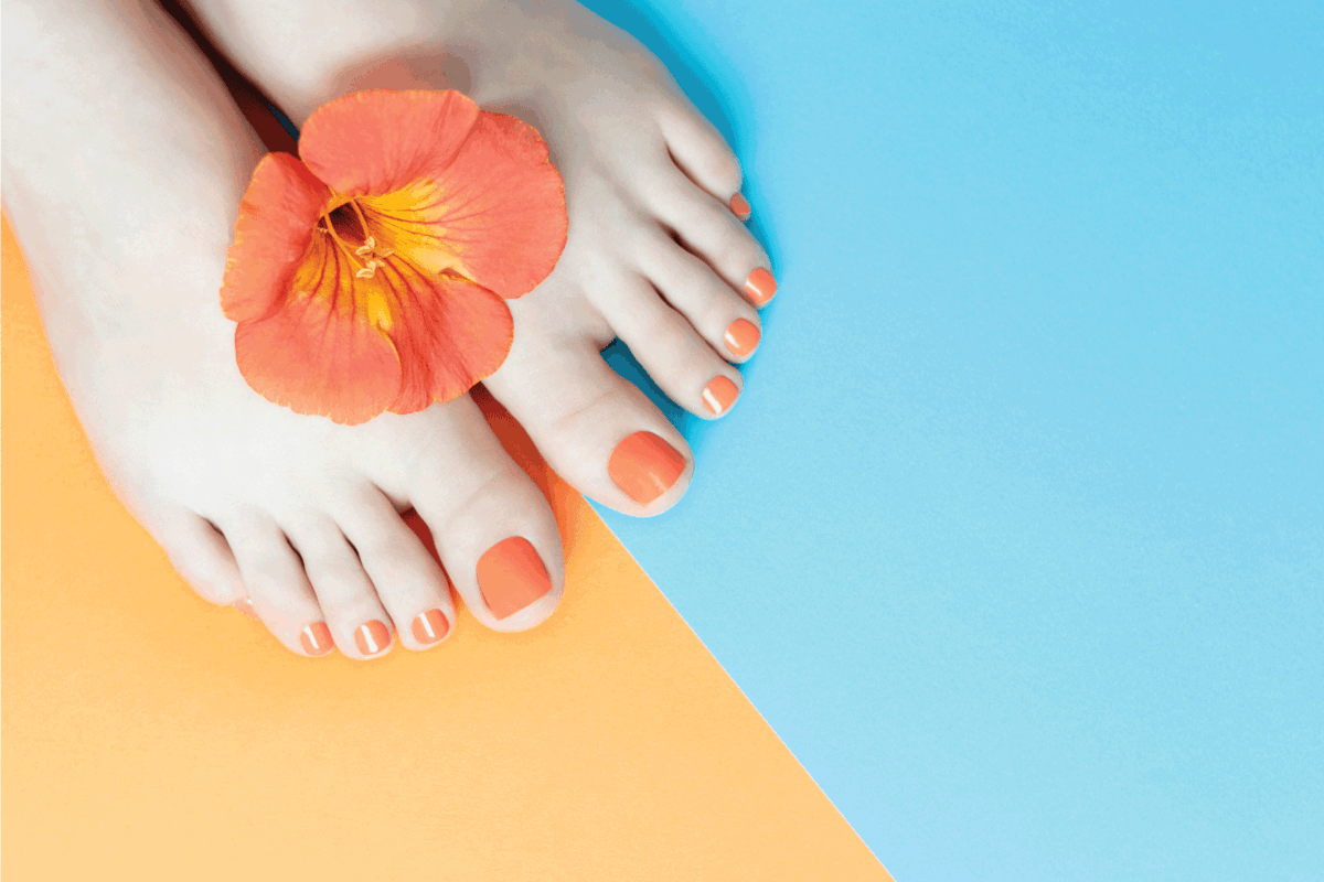 Female legs with a beautiful orange pedicure with a flower on a blue and orange background