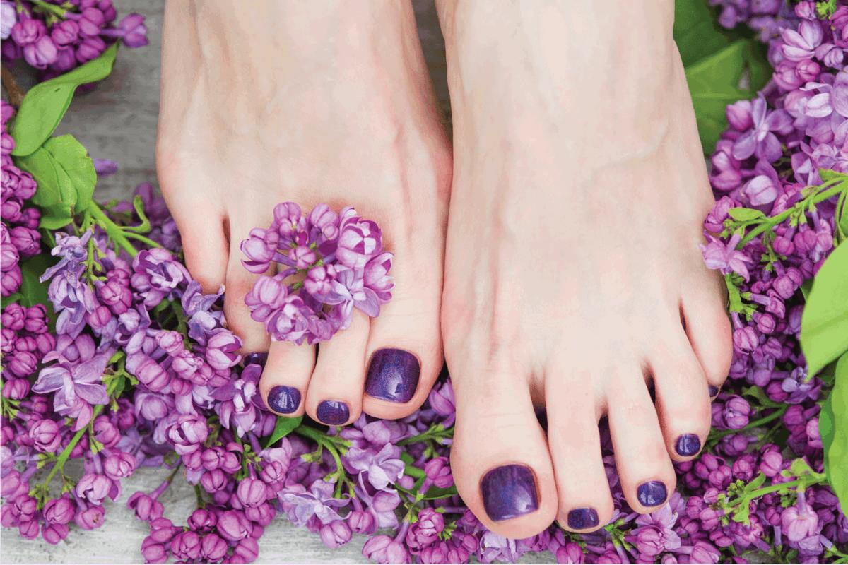 Woman feet with dark purple pedicure