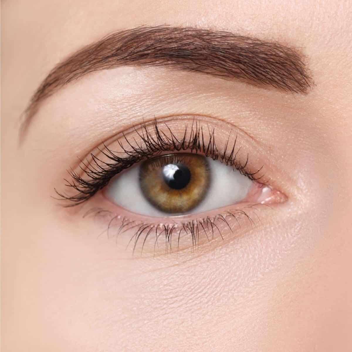 closeup of brown eye. Beautiful macro image of female eye with makeup. Perfect shape of eyebrow. Cosmetics and make-up